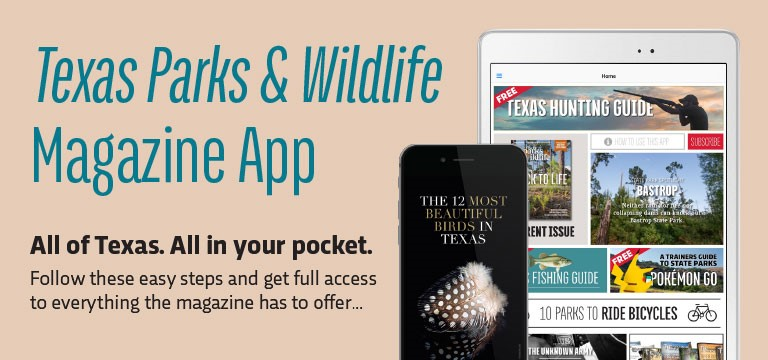 Subscribe To The Texas Parks Amp Wildlife Magazine App