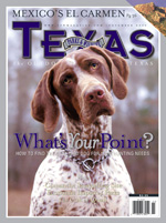 Picture of the cover to the November 2006 magazine