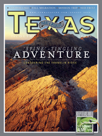 August 2009 cover image Franklin Mountains