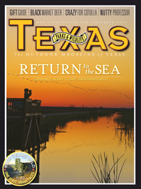 December 2009 cover image Birdwatching at San Bernard River National Wildlife refuge