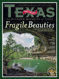 July 2009 cover image Hamilton Pool