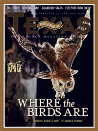 May 2009 cover image eastern screech-owl