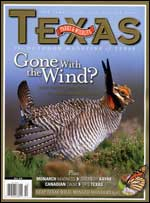 October 2009 cover image lesser prairie-chicken