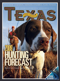 September 2009 cover image hunting dog