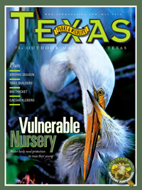 May 2010 cover image 12 Vulnerable Nursery