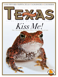 November 2010 cover image Kiss Me!