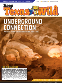 KTW 2011 cover