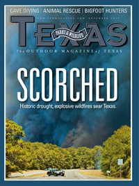 photo essay historic drought explosive wildfires sear texas  dec 2011 cover image
