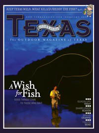 February 2011 cover image A Wish for a Fish