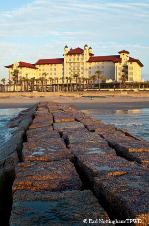 Image Result For Rooms In Galveston