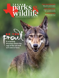 December 2019 Texas Parks & Wildlife Magazine cover