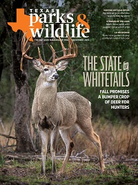 November 2019 Texas Parks & Wildlife Magazine cover