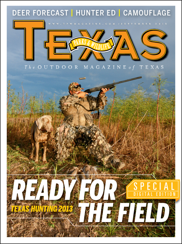 hunting cover image