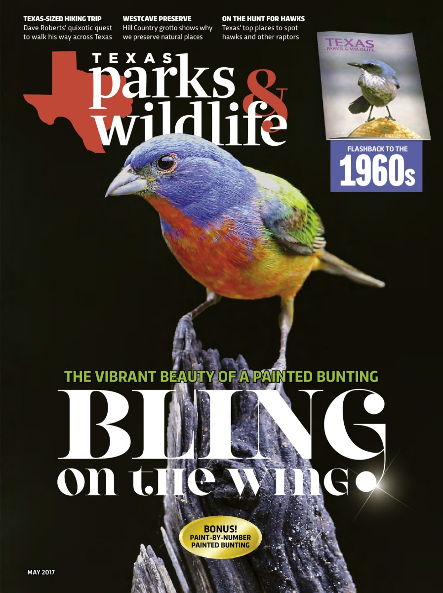 Texas Parks Wildlife Magazine May 2017