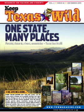 front page of the December 09 KTW